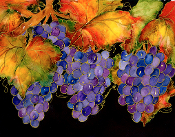 Grapes on the Vine Giclee (4 Sizes available)