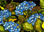 Blue Hydrangea Giclee (4 Sizes available)