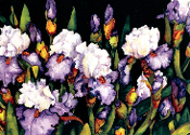 Iris Giclee (4 Sizes Available)