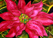 Pink Poinsettia Cutting Board (2 sizes available)
