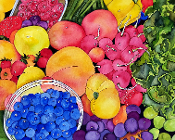 Harvest Abundance Giclees (4 Sizes available)
