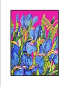 Blue Iris (Pink) Giclee (3 Sizes available)